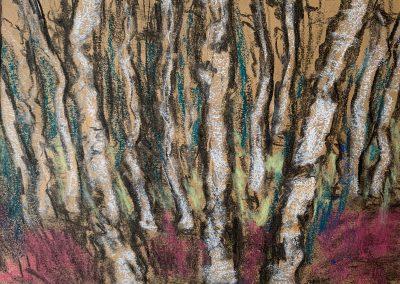 ansari-birkenwald